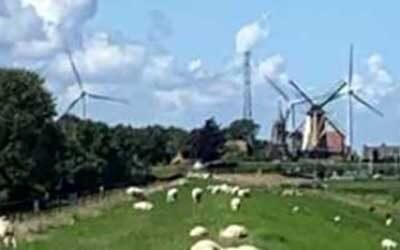 Zienswijze windmolens bij Willemstad